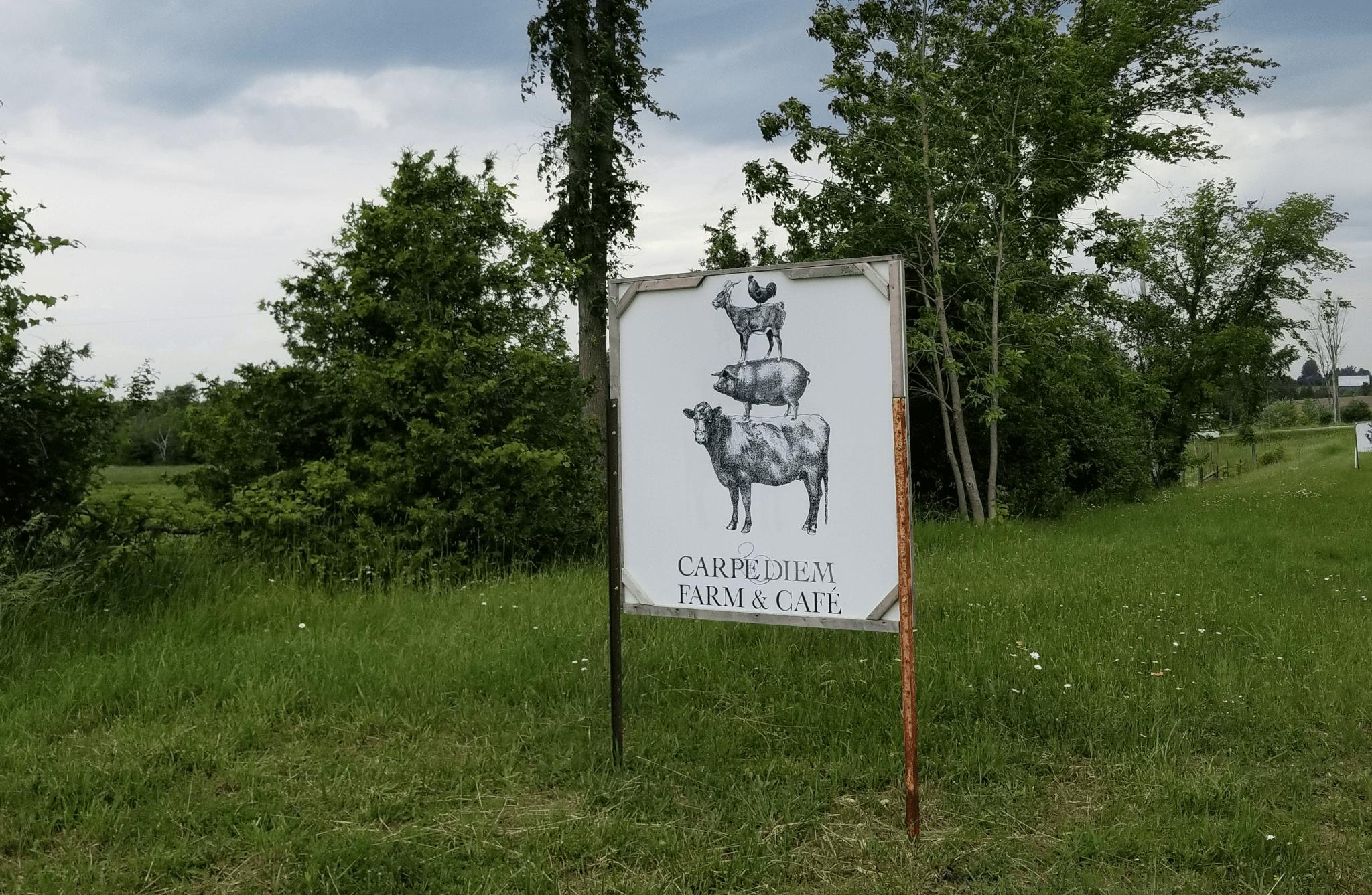Carpe Diem Farm and Cafe