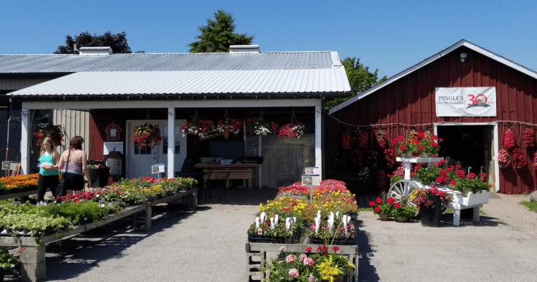 Pingle's Farm Market