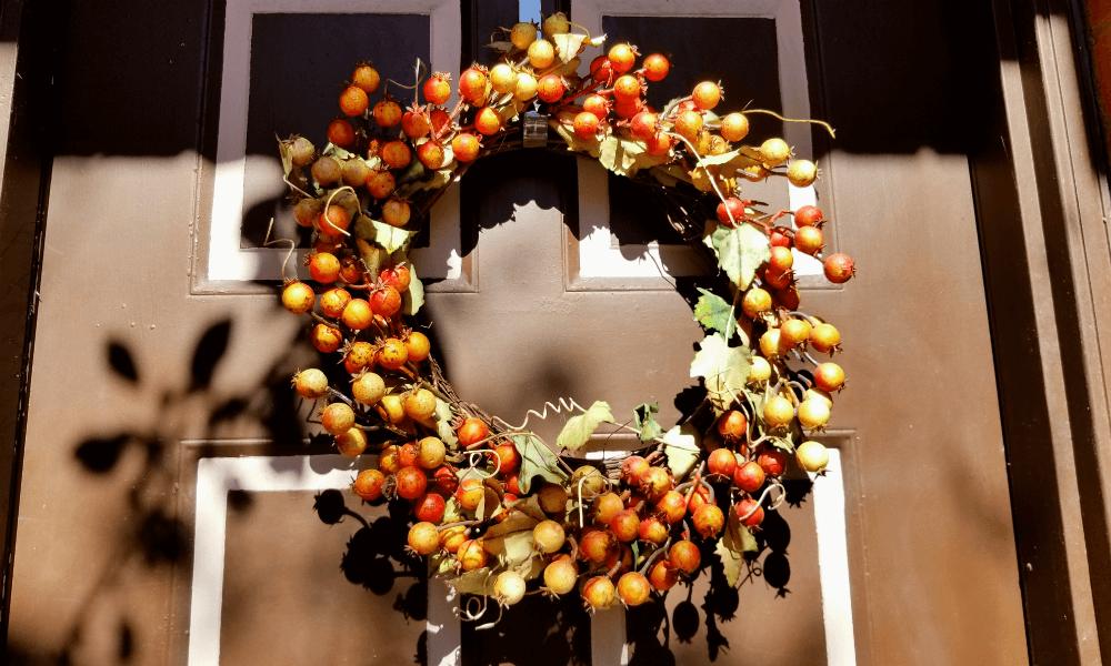 The Season of Plenty